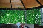 Гостевой дом «BONJOUR»