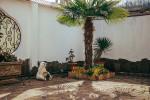 Гостевой дом «Anissa»