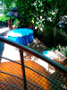 Гостевой дом «Жемчужина»