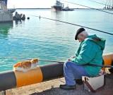 Рыбалка в туапсинском районе с берега