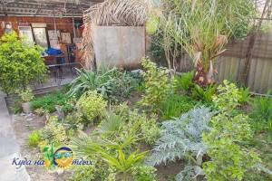 Гостевой дом «У Фатимы»